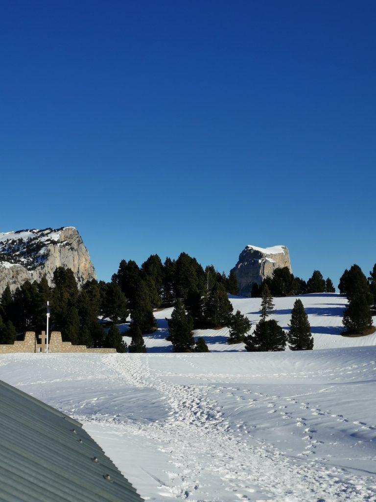 Plusieurs sapins avec le mont aiguille recouvert de neige
