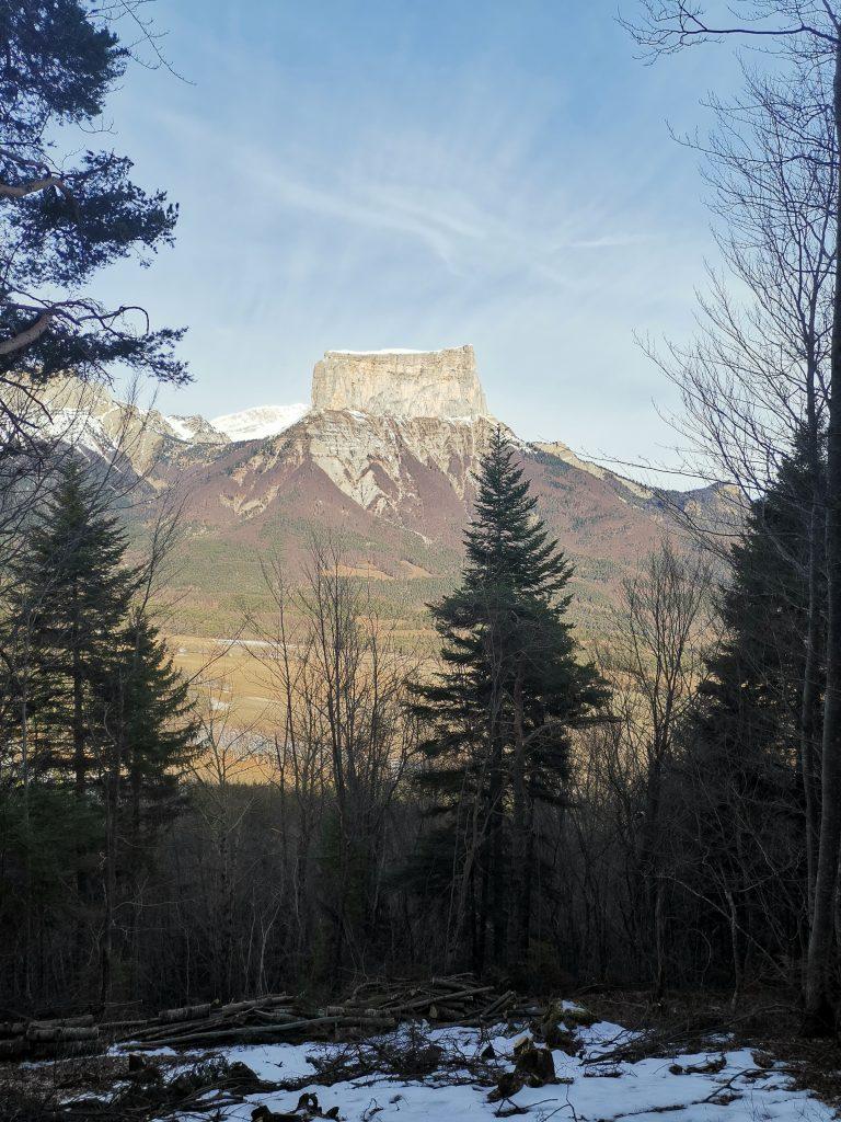 Sapins au premier plan avec le mont aiguille au fond