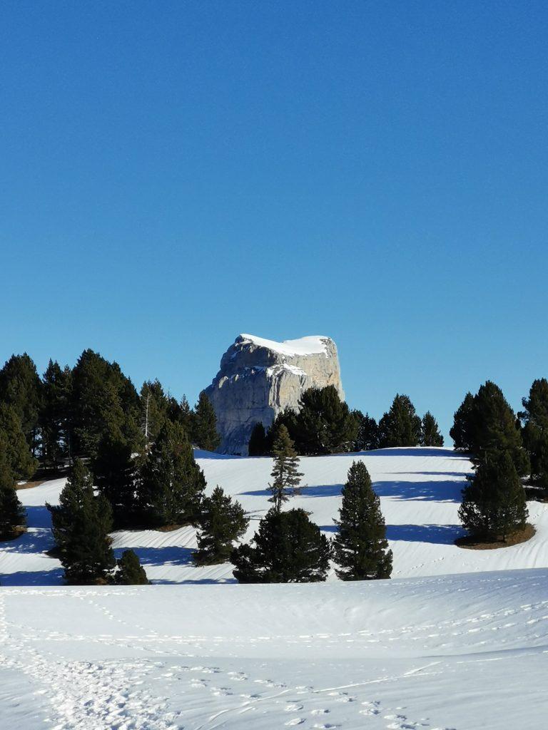 mont aiguille avec au premier plan des arbres et de la neige