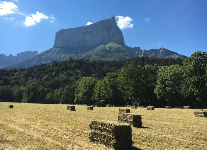 Le mont aiguille avec une vue sur un champ de paille